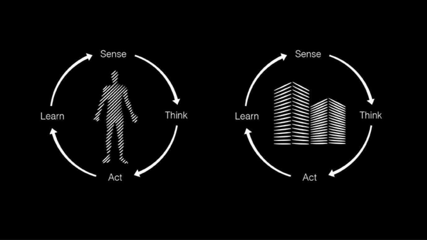 Learn-Think-Kreislauf